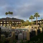 Morning near the pool