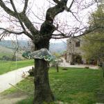 Photo de Agriturismo Il Sentiero