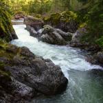 Little Qualicum Falls Provincial Park Bild