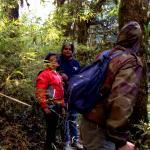 Trekking in jungle