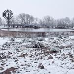 Blesfontein Farm