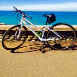 Ladies Specialized Bikes for Rent at NiKaro Outdoors, LLC