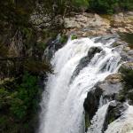 wandelen langs de Kerikeri River, eindigend bij de Rainbowfalls