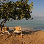Landscape - Hotel Riu Negril Photo