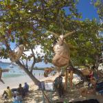 Plage de la baie le long des hôtels, camelots sur la plage et sur l'eau