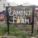 Lamont City Farm