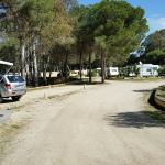 Foto de Camping Playa las Dunas