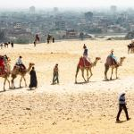 Camels at Pyramids with Smoggy Cairo