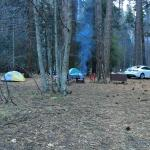 Foto de North Pines Campground