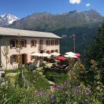 Photo de Pension Edelweiss Zermatt