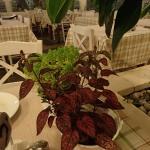 Table decoration - Basil