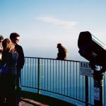 Barbary macaques (Gibraltar monkeys) atop the Rock of Gibraltar