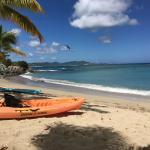 The Buccaneer -- St Croix Foto