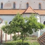 Ubytování Slavonice - Neradová | Zahrada