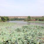 Kaeng Krachan Dam Foto