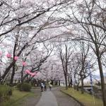 Foto de Hachimanbara Historic Site Park