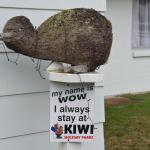 it's a Kiwi Holiday Park!