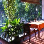 a sunny veranda