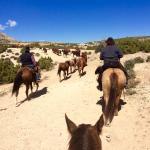 Dryhead Ranch Foto