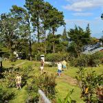 Jardin où sont disséminés les 4 ou 5 chalets
