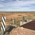 Pictures of the Dog Fence where it crosses the Stuart Highway north of Coober Pedy.