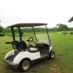 写真Kaziranga Golf Resort枚