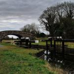Plenty of trails from Edenderry to Downshire Bridge where you can walk left to Ticknevin Lock or