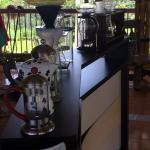 Visite de la ferme de café La Morelia