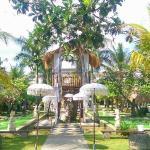 Heaven & Earth Water Garden ~ Chestnut Tree House