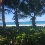 Foto de Dorado Beach, a Ritz-Carlton Reserve
