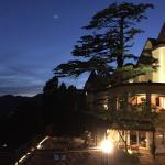 Dine under the Stars and the Moon