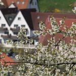 Foto de Landidyll Hotel Zum Alten Schloss