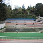 Blick auf Pool, Garten