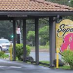 Photo de Super 8 Monterey/Carmel