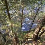 Photo of Capilano River RV Park
