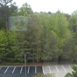 View from our room @ Hampton Inn & Suites Alpharetta