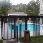 Pool @ Hampton Inn & Suites Alpharetta