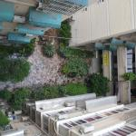 Garden inside hotel building