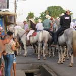 Battle of the Spanish Horses Begins!