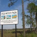 Dog Wood Park Jax