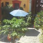 Photo de Hotel Posada del Centro