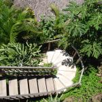 Gambar La Loma Linda: Bungalows, Yoga and Feldenkrais