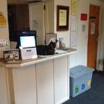 Ptolemy the Reception cat at Thorney How