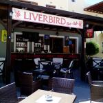 Liverbird sun terrace