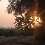 Photo de Little Palm Grove