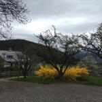 Foto di Naturhotel Wieserhof