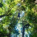 Foto di The Original Canopy Tour