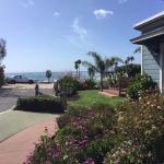 Edgewater Beach Motel Foto