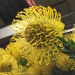 Photo de San Francisco Flower Mart
