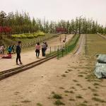 Sik Park